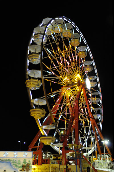 Colorful attractions lit up the night sky on the fair grounds for visitors to enjoy.
