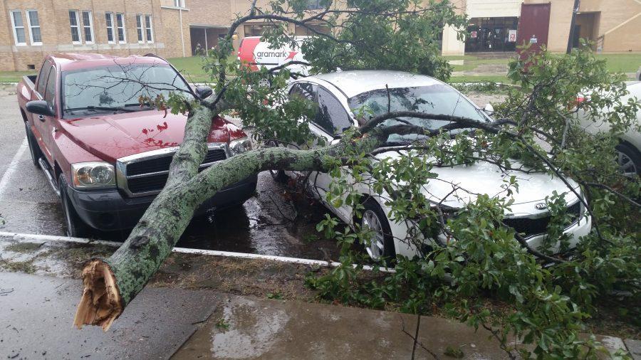 ULM+Storm+Damage
