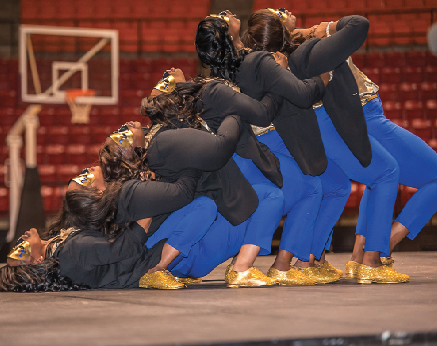 NPHC showcases its newest members
