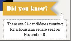 LA senate seat vote on Nov. Election Day