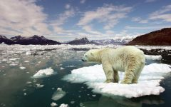 Climate change is not something to dismiss