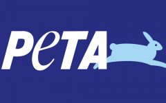 PETA honors cows, seeks to educate