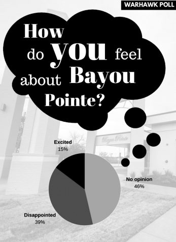 Bayou Pointe: Disappointed, but not surprised