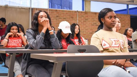 Sorority hosts panel addressing violence, sex