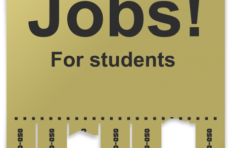 4 ideal jobs for college students