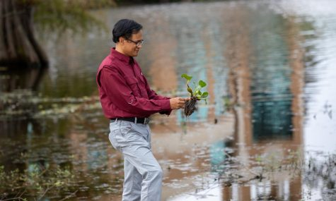 ULM professor receives environmental grant