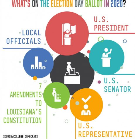 What you need to know about Louisiana's ballot
