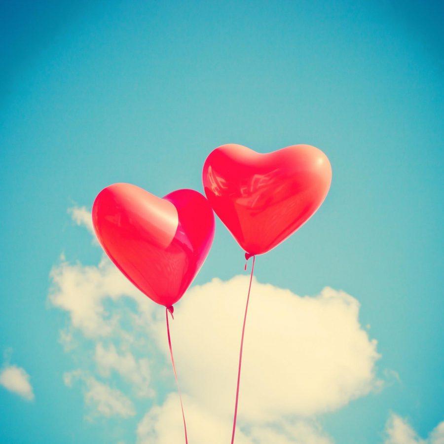 Warhawks+share+their+best+Valentine%E2%80%99s+Day+stories