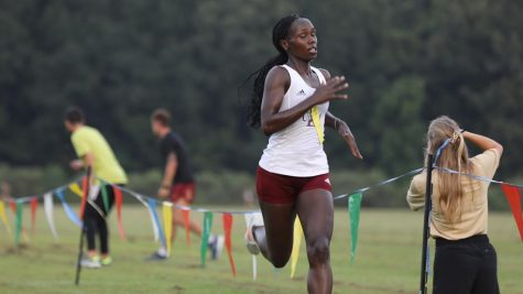 Women's cross country stalls at 19th | Sports Briefs